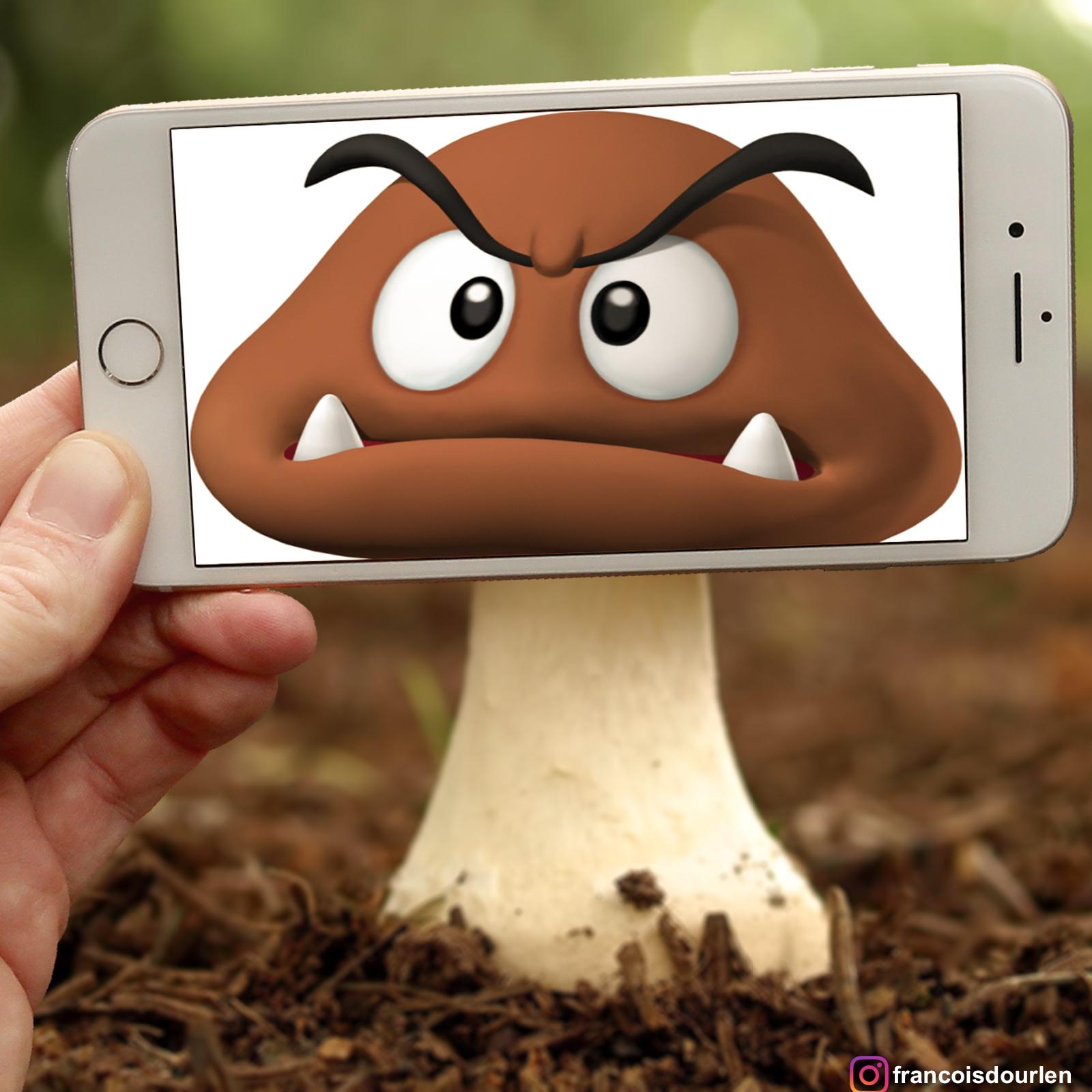 Mushroom copie 2