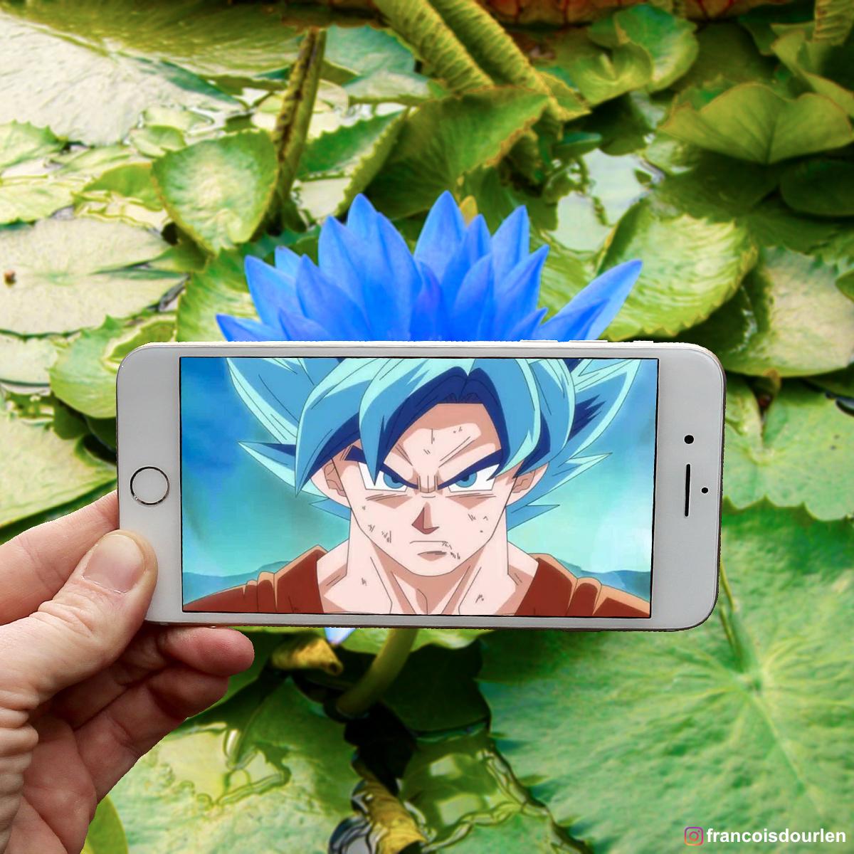 SanGoku Bleu
