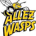 Allez Wasps.jpg
