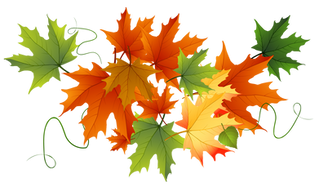 Why do the leaves change color in Fall?