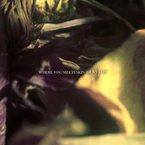 Where Fog Meets Skin - ANS3319 (Digital Album)