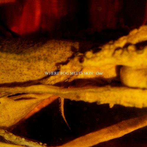Where Fog Meets Skin - One (Digital Album)