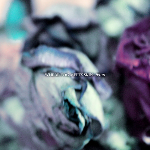 Where Fog Meets Skin - Four (Digital Album)