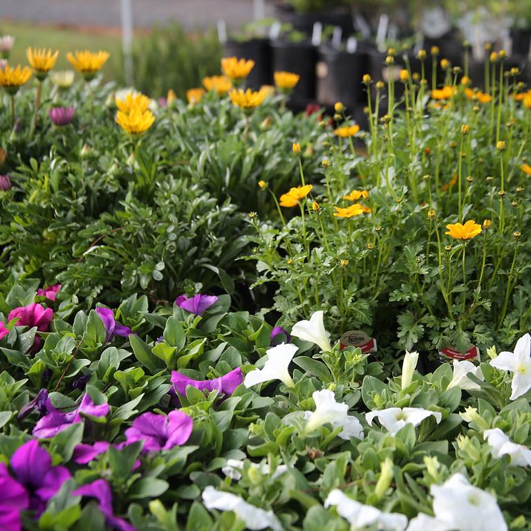Grumpy's 2nd BIG Spring Garden Sale!