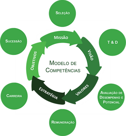 01._Modelo_de_Competências_-_Imagem_Site