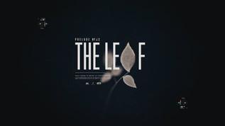 School of Motion - Intro Film for Kickstarter course