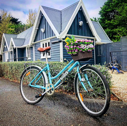 Bella the Bicycle