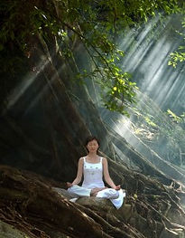 meditating-with-tree-234x300.jpg