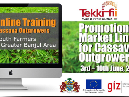 GYIN Gambia's Virtual Training for 120 Selected Youth Cassava Out-Growers