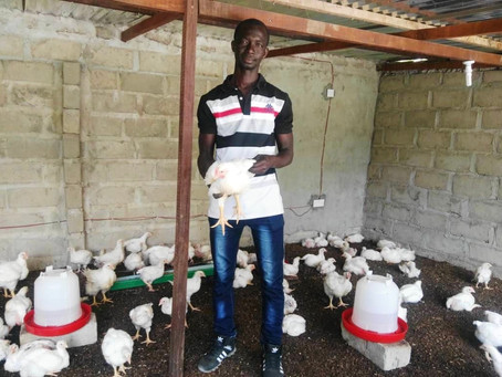 KJ Poultry Farming CEO, Modou Sillah has called on Diaspora Gambians to invest in Poultry Faming