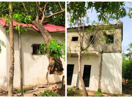 Strong winds cause massive distruption in and around Gunjur