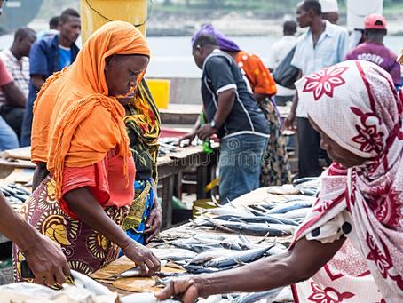GunjurBiz:Creating a Sunday market in Gunjur