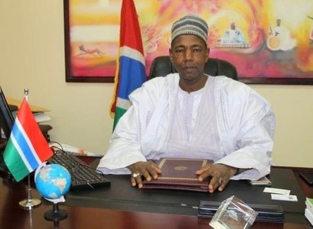 UDP STATEMENT ON THE IRRESPONSIBLE & DIVISIVE COMMENTS OF MINISTER HAMAT BAH