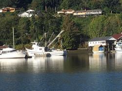Harbor photo.JPG
