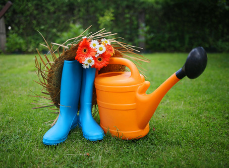 Refresh Your Lawn or Replace with Artificial Grass?