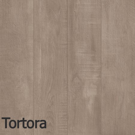 Wildwood Tortora