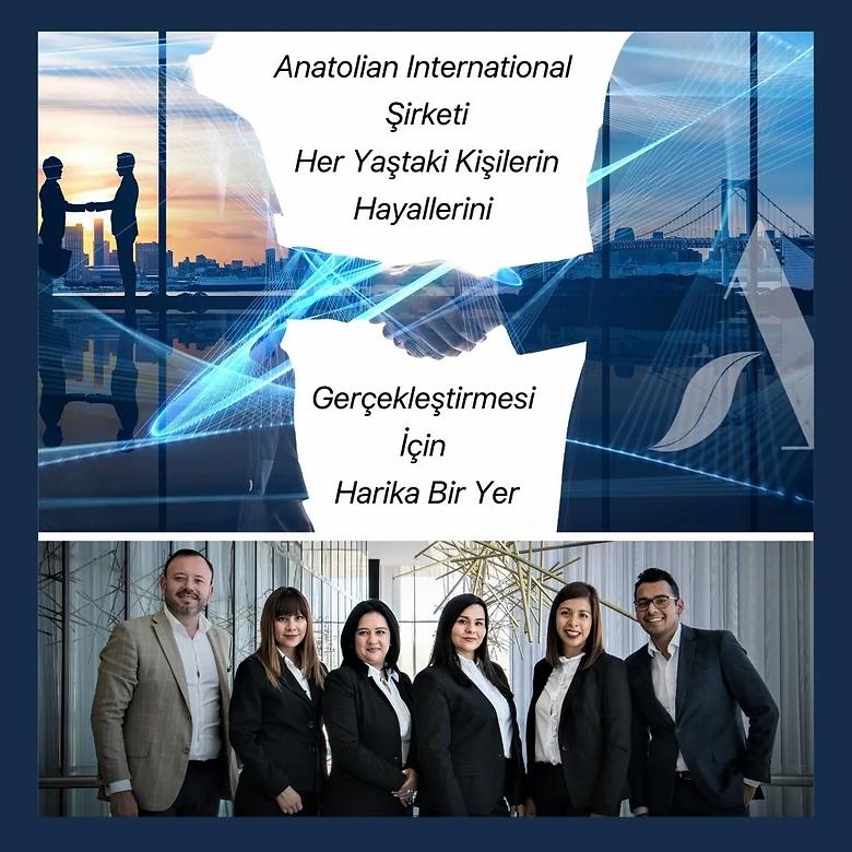Anatolian Network.webp