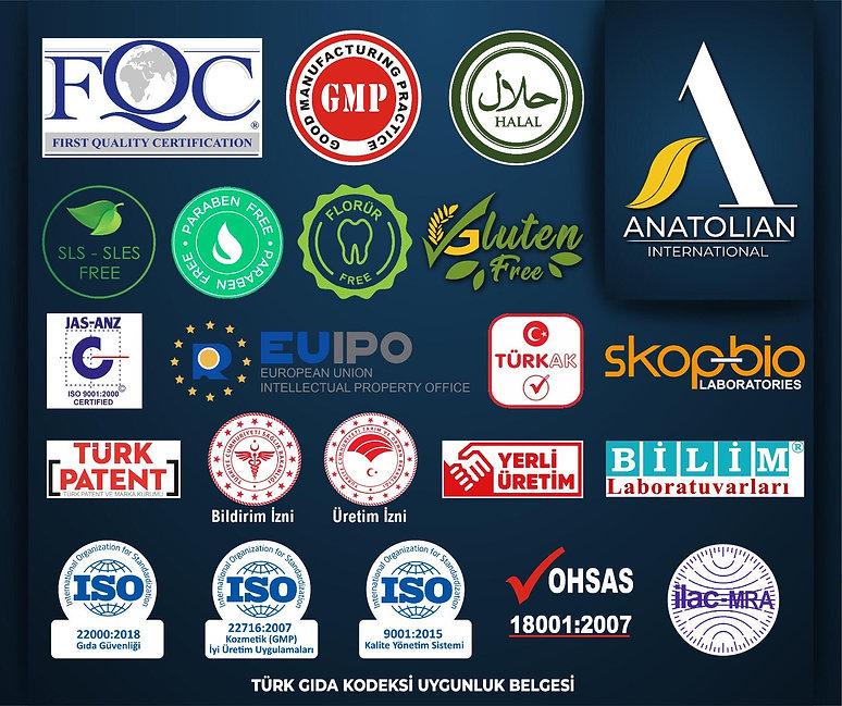 Anatolian International İzin Belgeleri