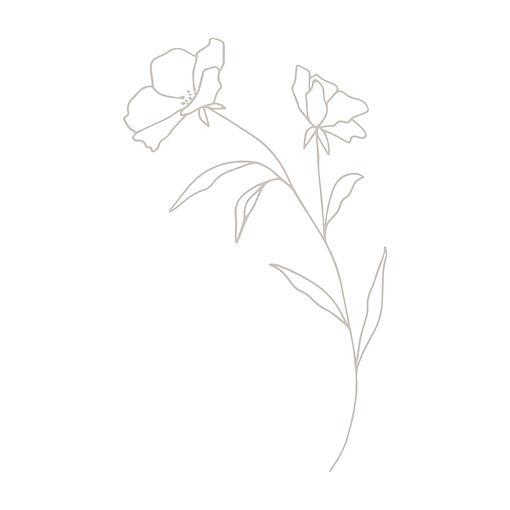 Primrose + Petals SAND_Flower Graphic co