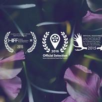 Midori in Hawaii_Award