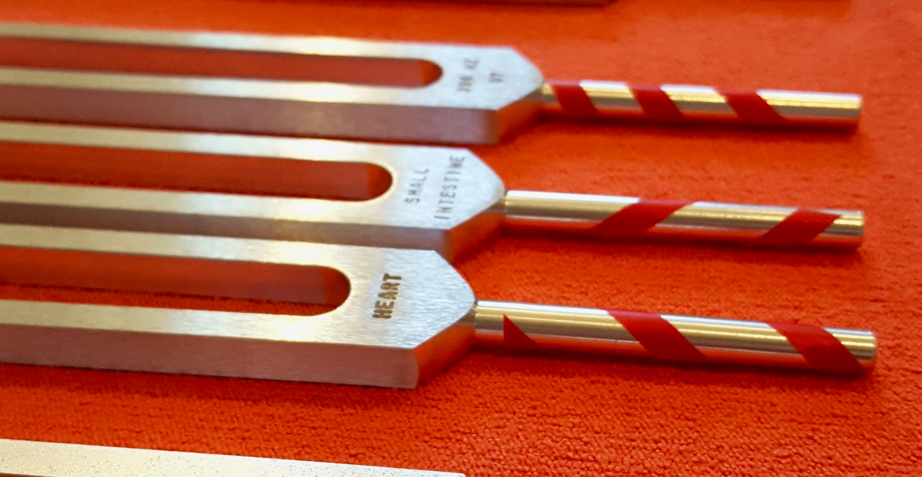 Miyuki M Tuning Forks - 1 (5).jpg