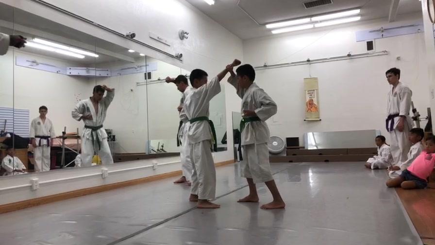 Shorei-ha Dojo Okinawa Gojyuryu Karate