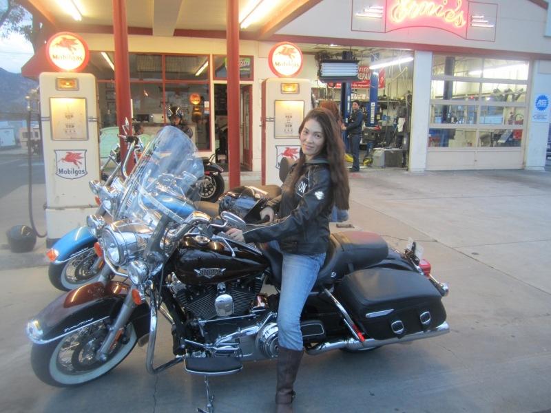 Miyuki M Harley Davidson 3