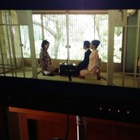 Sakura Petal movie