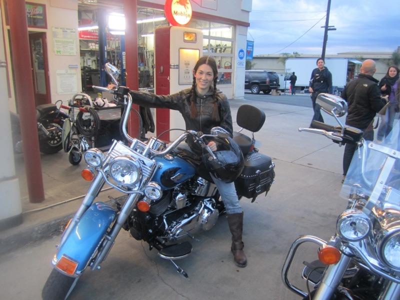 Miyuki M Harley Davidson