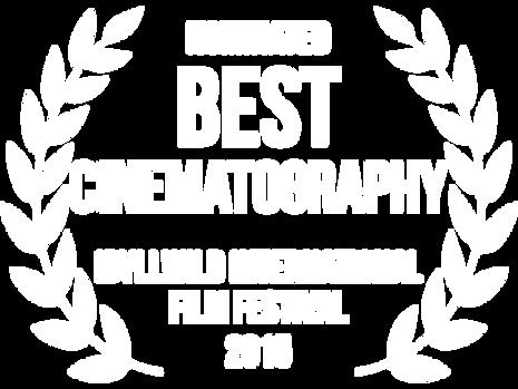 idlywild-cine.png