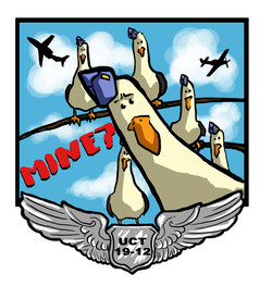 USAF Patch Design; Seagulls
