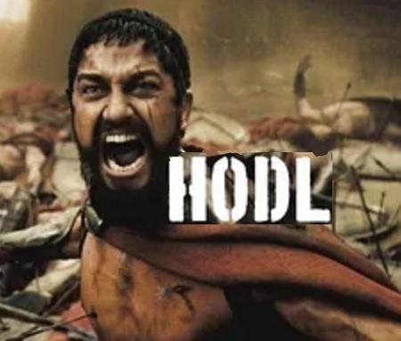 Insane HODL'ers  (Podcast)