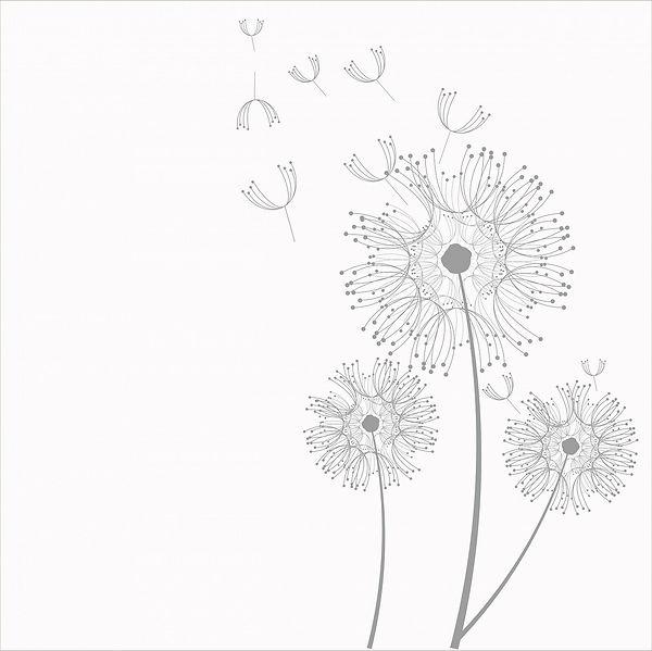 dandelion-220246_1280.jpg