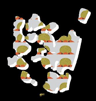 Illustrated map of Pondicherry
