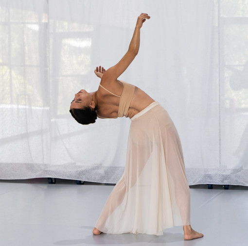Earth solo: Choreography by Sara Di Segno Dancer: Sara Di Segno Air: Choreography by Luanne Hyson Dancers: Luanne Hyson & Denise Kwan Void solo: Choreography by Michelle Valenti Dancer: Michelle Valenti  Photography & filming by En Pointe Productions