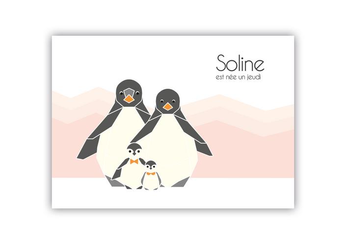 Annonce naissance Soline