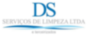 logo-ds-service.png