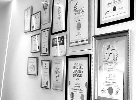 mode aesthetics singapore, lush aesthetics singapore, coolsculpting, fat freezing, laser hair removal, laser face treatment, fat loss, led teeth whitening singapore, pigmentation treatment, best aesthetic clinic singapore, best medispa singapore, scar treatment, lipo laser, hydrafacial, emshape Singapore, carbon laser singapore