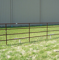 20ft-fencing-5rails-01.jpg