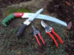 Pruning saws and shears we use every day