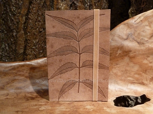 Fern Pocket book