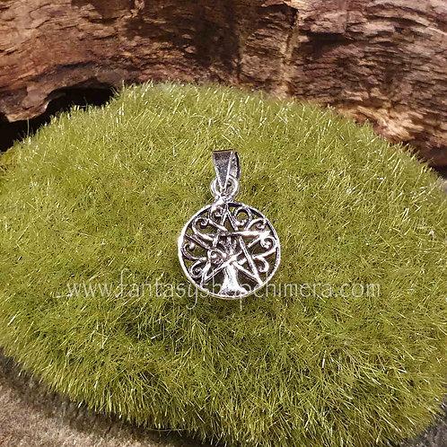 pentagram tree of life pendant small silver hangertje pentagram levensboom zilver symbolische sieraden