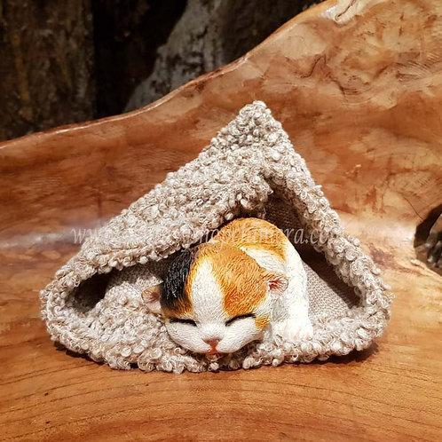 Davy sleeping dozing cat kitten poesje beeldje slapend figurine katje cadeautjeswinkel fantasy store shop amsterdam