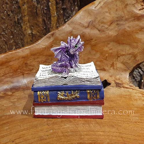 dragon box book gift draakje op doos doosje boekje boekvorm draken cadeautjes  purple paars