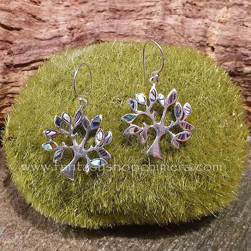 tree of life earrings silver abalone schelp oorbellen zilver levensboom