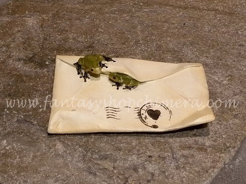 Frog on an Envelope