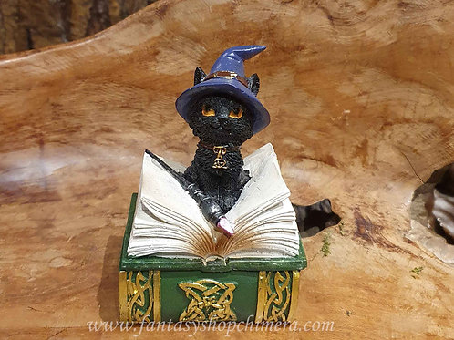 Binx witch wizard kitten black cat spell book zwarte kat met boek beeldje figurine  box doosje