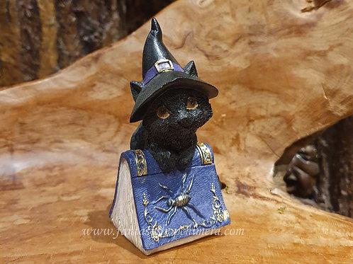 Pocus witch wizard kitten black cat spell book zwarte kat met boek beeldje figurine