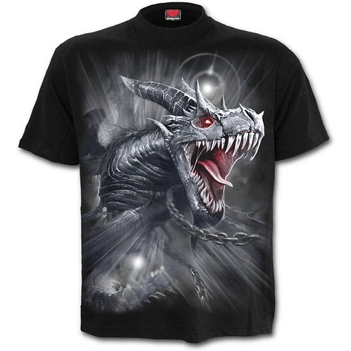 Dragon's cry t-shirt