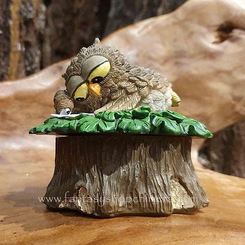 owl box uiltje op doosje fantasy shop chimera amsterdam